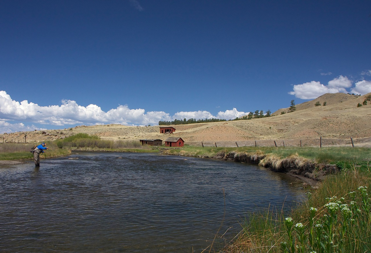 A fisherman casts into the crisp waters of the South Platte River, surrounded by rolling hills.