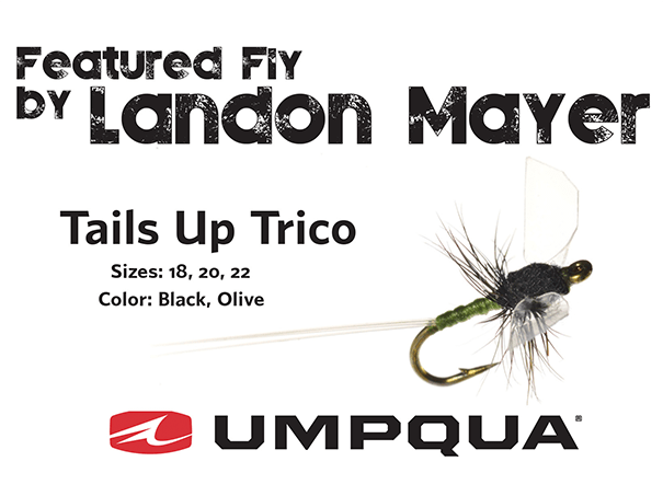 Picture of the Tails up Trico fly design, by Umpqua Feather Merchants.
