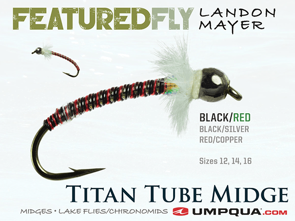 An up-close look at the Titan Tube Midge, an Umpqua featured fly