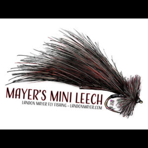 Mayer's Mini Leech