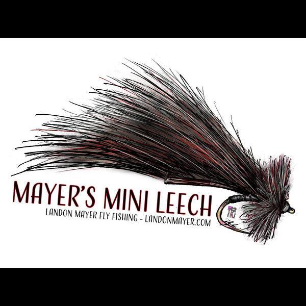 Mayer's Mini Leech