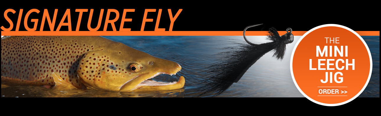 The Mini Leech Jib - Landon Mayer's Signature Fly Pattern