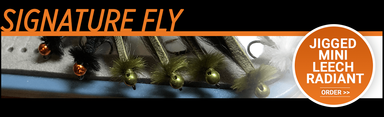 Jigged Mini Leech Radiant - Landon Mayer's Signature Fly Pattern